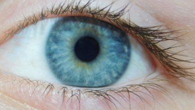 Photo of Aprenda 7 exercícios fáceis para melhorar a visão e relaxar a região dos olhos