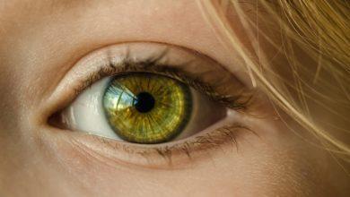 Photo of A visão representa 80% da percepção pelos sentidos: pensar visualmente aumenta a produtividade