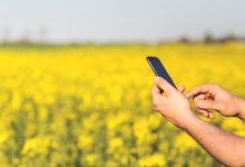 A Internet das Coisas movimenta o Agronegócio