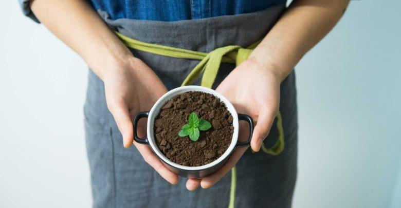 De pequena para média ou grande empresa: como se preparar para crescer?