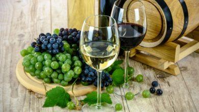 Photo of SP International Wine & Cachaça impulsionam o mercado de bebidas adultas no Brasil