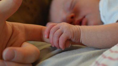 Photo of Maternidade X Carreira:  O desafio que vale a pena