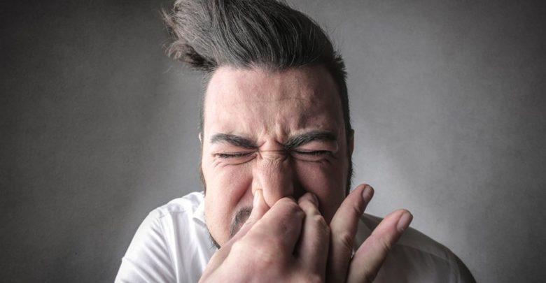 Dengue x Gripe: casos e sintomas podem ser confundidos. Veja semelhanças e diferenças entre as doenças!